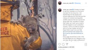 lackpink ratuje australię